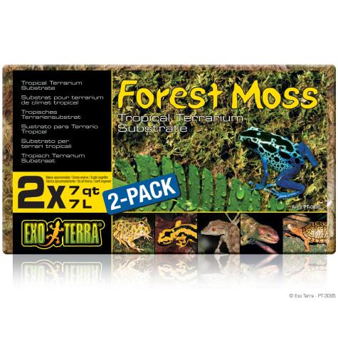 Exo-Terra Forest Moss Terrarium Substrate