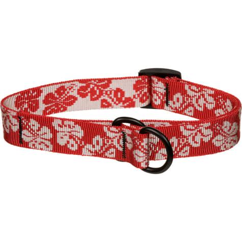 Bison Pet Red Hawaiian Adjustable Nylon Dog Slip Collar