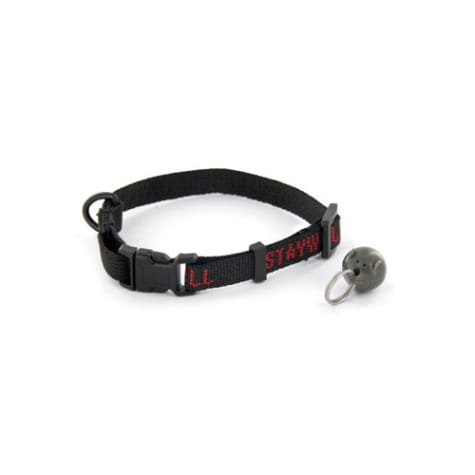 PetSafe Magnetic Collar Key & Collar