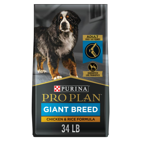 Purina Pro Plan Focus High Protein Giant Breed Formula Dry Dog Food