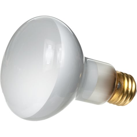 Zilla Day White Light Incandescent Spot Bulbs, 100 Watts