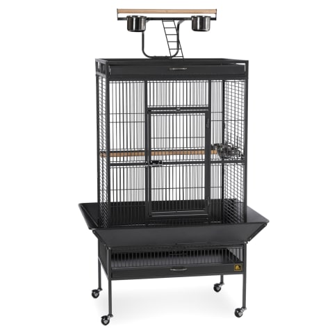 Prevue Pet Products Signature Select Series Wrought Iron Bird Cage in Black