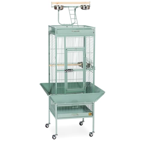 Prevue Pet Products Signature Select Series Wrought Iron Bird Cage in Sage
