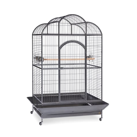 Prevue Pet Products Signature Series Wrought Iron Silverado Macaw Dometop Bird Cage in Silver