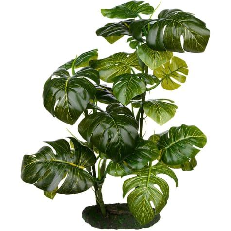 Imagitarium Stand Araceae Plant Terrarium Decor