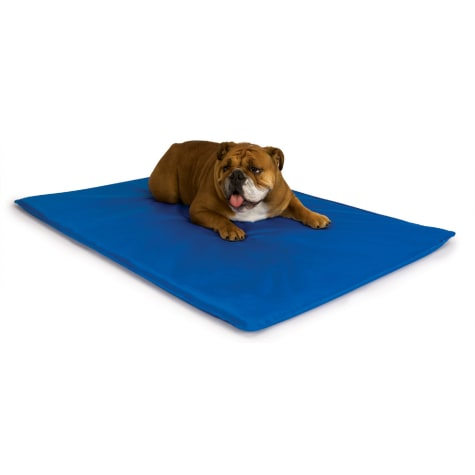 K&H Cool Blue Bed III for Dogs