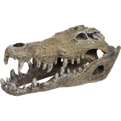 Blue Ribbon Nile Crocodile Skull Aquarium Ornament