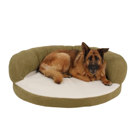 Carolina Pet Company Sage Green Orthopedic Bolster Personalized Dog Bed