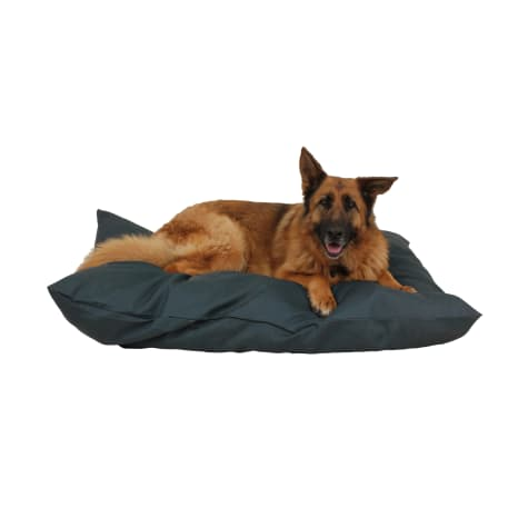 Carolina Pet Company Green Indoor Outdoor Shebang Dog Bed