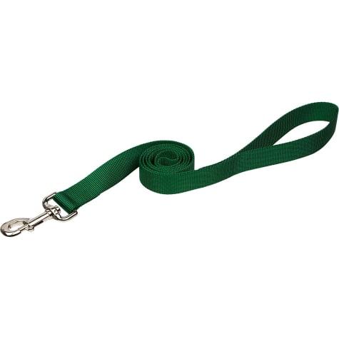 Coastal Pet Nylon Personalized Dog Leash in Hunter, 3/8
