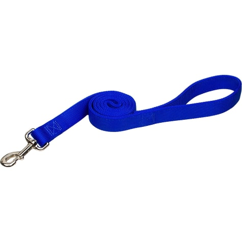 Coastal Pet Double Ply Nylon Personalized Dog Leash in Blue