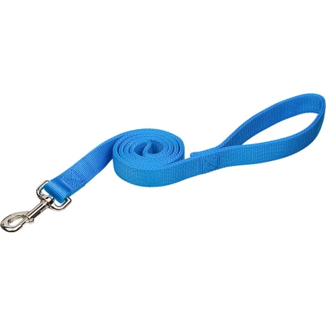 Coastal Pet Double Ply Nylon Personalized Dog Leash in Light Blue