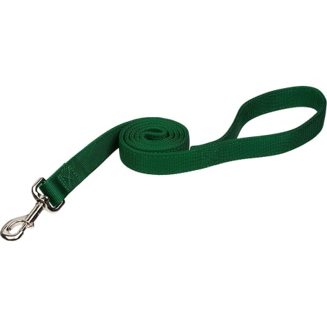 Coastal Pet Double Ply Nylon Personalized Dog Leash in Hunter
