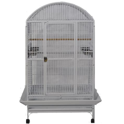 A&E Cage Company Stainless Steel Palace Dometop X-Large Bird Cage