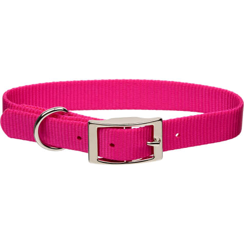 Coastal Pet Metal Buckle Nylon Personalized Dog Collar in Pink Flamingo, 5/8