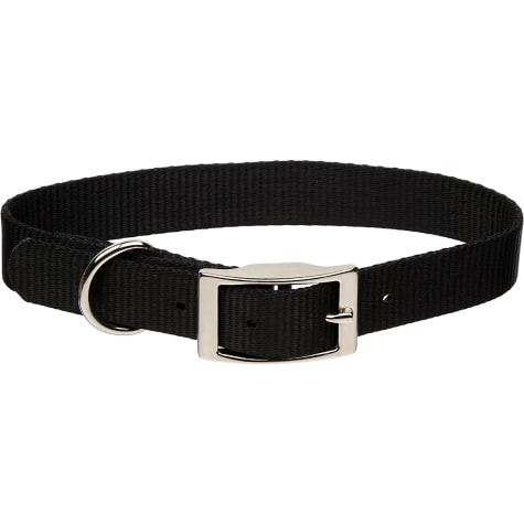 Coastal Pet Metal Buckle Nylon Personalized Dog Collar in Black, 1