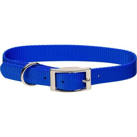 Coastal Pet Metal Buckle Nylon Personalized Dog Collar in Blue, 3/8