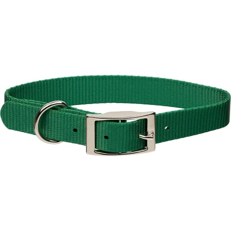 Coastal Pet Metal Buckle Nylon Personalized Dog Collar in Hunter, 1