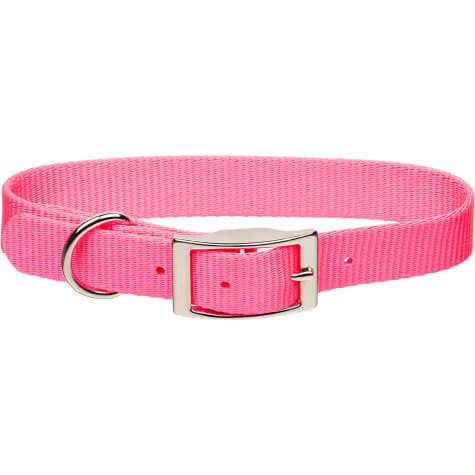 Coastal Pet Metal Buckle Nylon Personalized Dog Collar in Neon Pink, 3/4