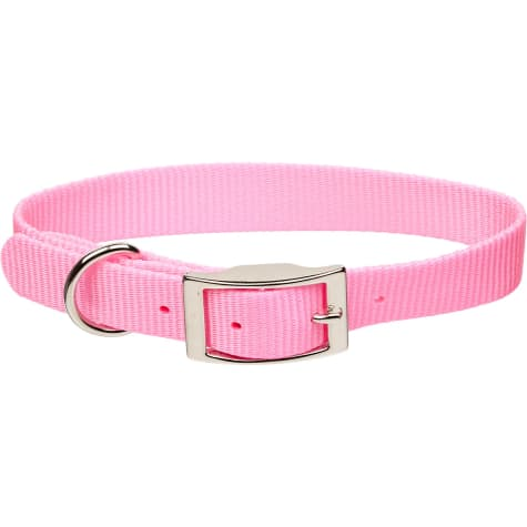 Coastal Pet Metal Buckle Nylon Personalized Dog Collar in Bright Pink, 3/4