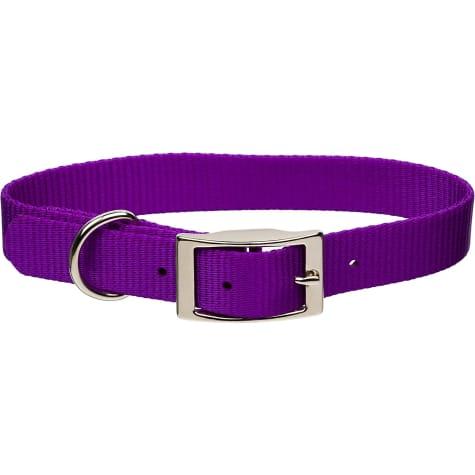 Coastal Pet Metal Buckle Nylon Personalized Dog Collar in Purple, 1