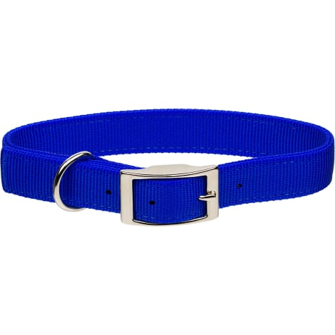 Coastal Pet Metal Buckle Double Ply Nylon Personalized Dog Collar in Blue