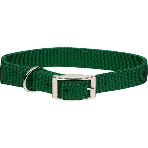 Coastal Pet Metal Buckle Double Ply Nylon Personalized Dog Collar in Hunter