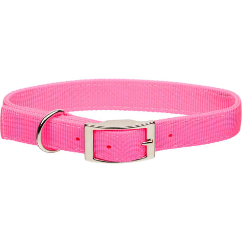 Coastal Pet Metal Buckle Double Ply Nylon Personalized Dog Collar in Bright Pink