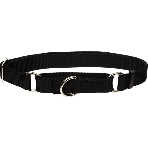 Coastal Pet No Slip Personalized Dog Collar in Black