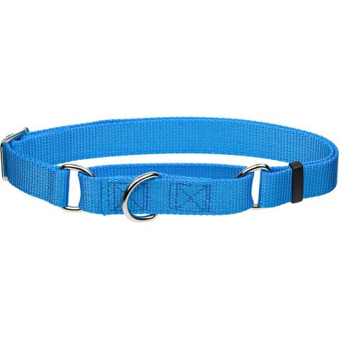 Coastal Pet No Slip Personalized Dog Collar in Light Blue