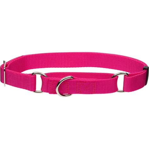 Coastal Pet No Slip Personalized Dog Collar in Pink Flamingo