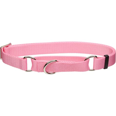 Coastal Pet No Slip Personalized Dog Collar in Bright Pink