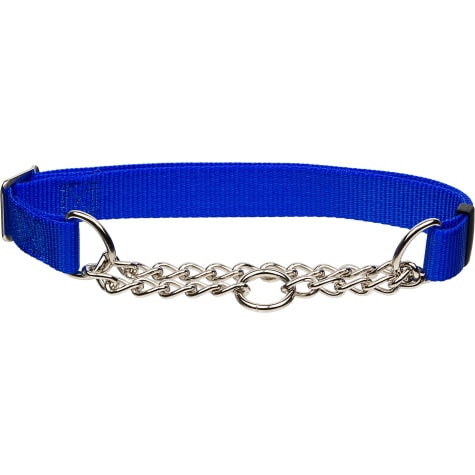 Coastal Pet Check Personalized Training Dog Collar in Blue