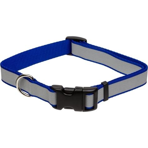 Coastal Pet Lazer Brite Personalized Reflective Dog Collar in Blue