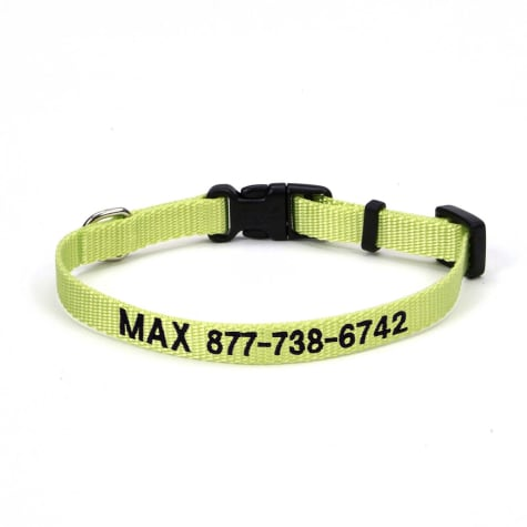 Coastal Pet Nylon Adjustable Personalized Dog Collar in Lime
