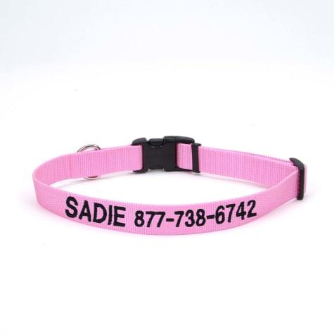 Coastal Pet Nylon Adjustable Personalized Dog Collar in Bright Pink