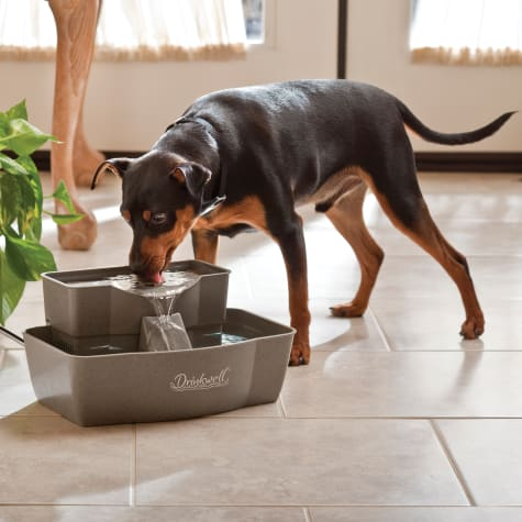 PetSafe Drinkwell Multi-Tier Fountain
