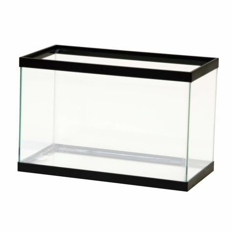 Aqueon Standard Glass Aquarium Tank 5.5 Gallon