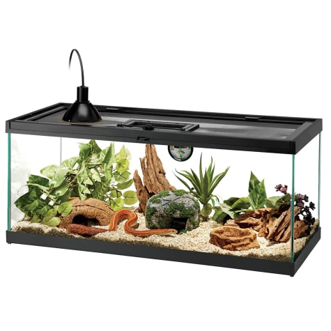 Aqueon Standard Glass Aquarium Tank 20 Gallon