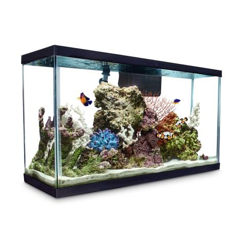 Aqueon Standard Glass Aquarium Tank 29 Gallon