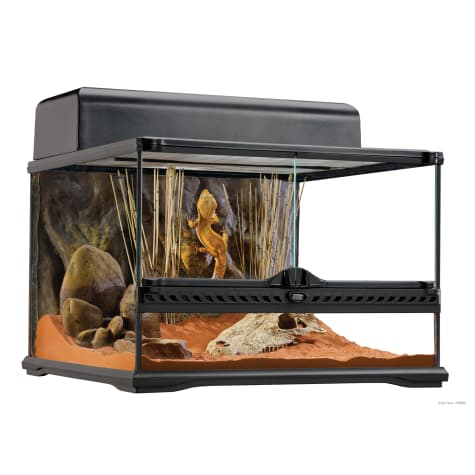 Exo Terra Small Low Terrarium, 18
