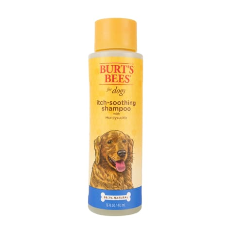 Burt's Bees for Dogs Itch Soothing Shampoo