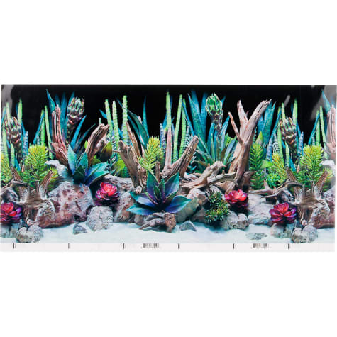 SeaView Double-Sided Desert Dream & Deep Flora Terrarium Background