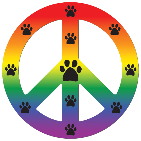 Imagine This Magnet Peace Dog Rainbow