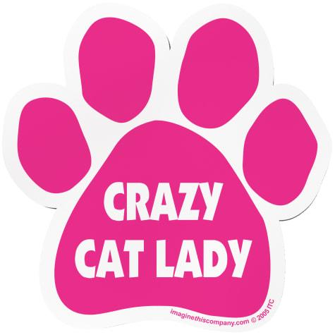 Imagine This Magnet Crazy Cat Lady