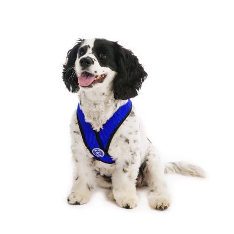 Gooby Choke Free Comfort X Soft Harness, Blue