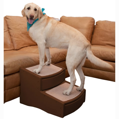 Pet Gear Easy Steps II Extra Wide for Dogs