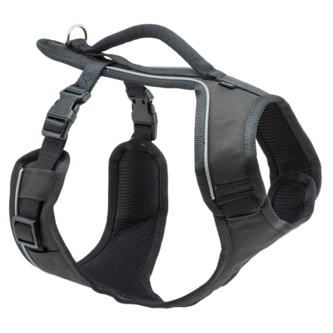 PetSafe EasySport Black Dog Harness