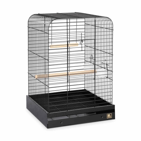 Prevue Pet Products Parrot Cage in Black
