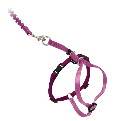 PetSafe Gentle Leader Come with Me Kitty Harness & Bungee Leash in Dusty Rose